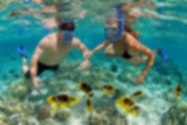 Isla Catalina Tours + Altos de Chavon _