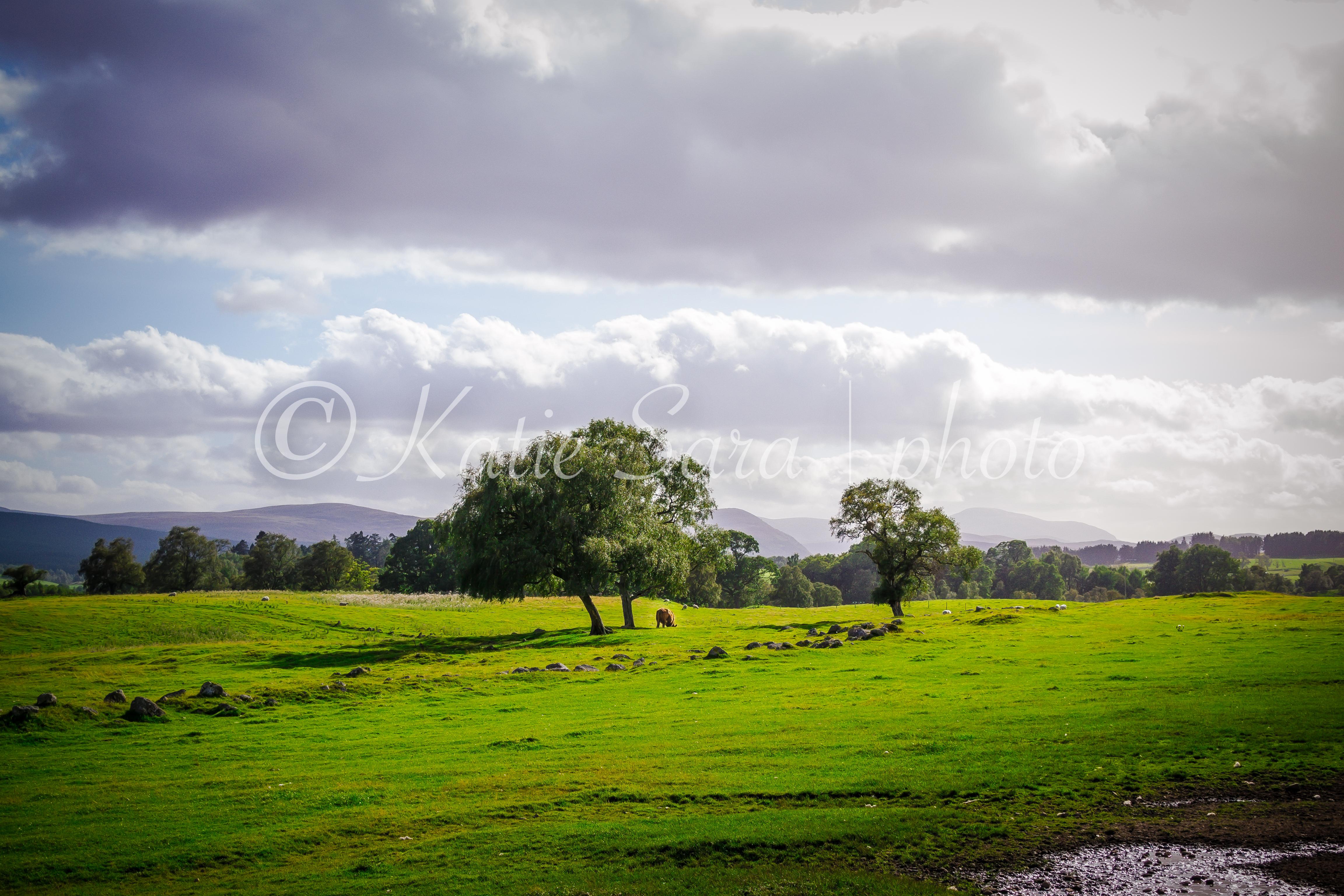 Leault Farm