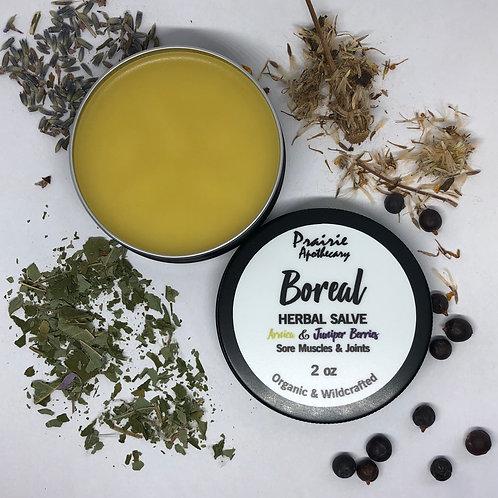 Boreal - Herbal Salve