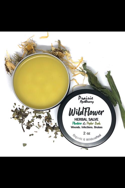 Wildflower - Herbal Salve
