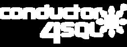 C4SQL Logo-03.png