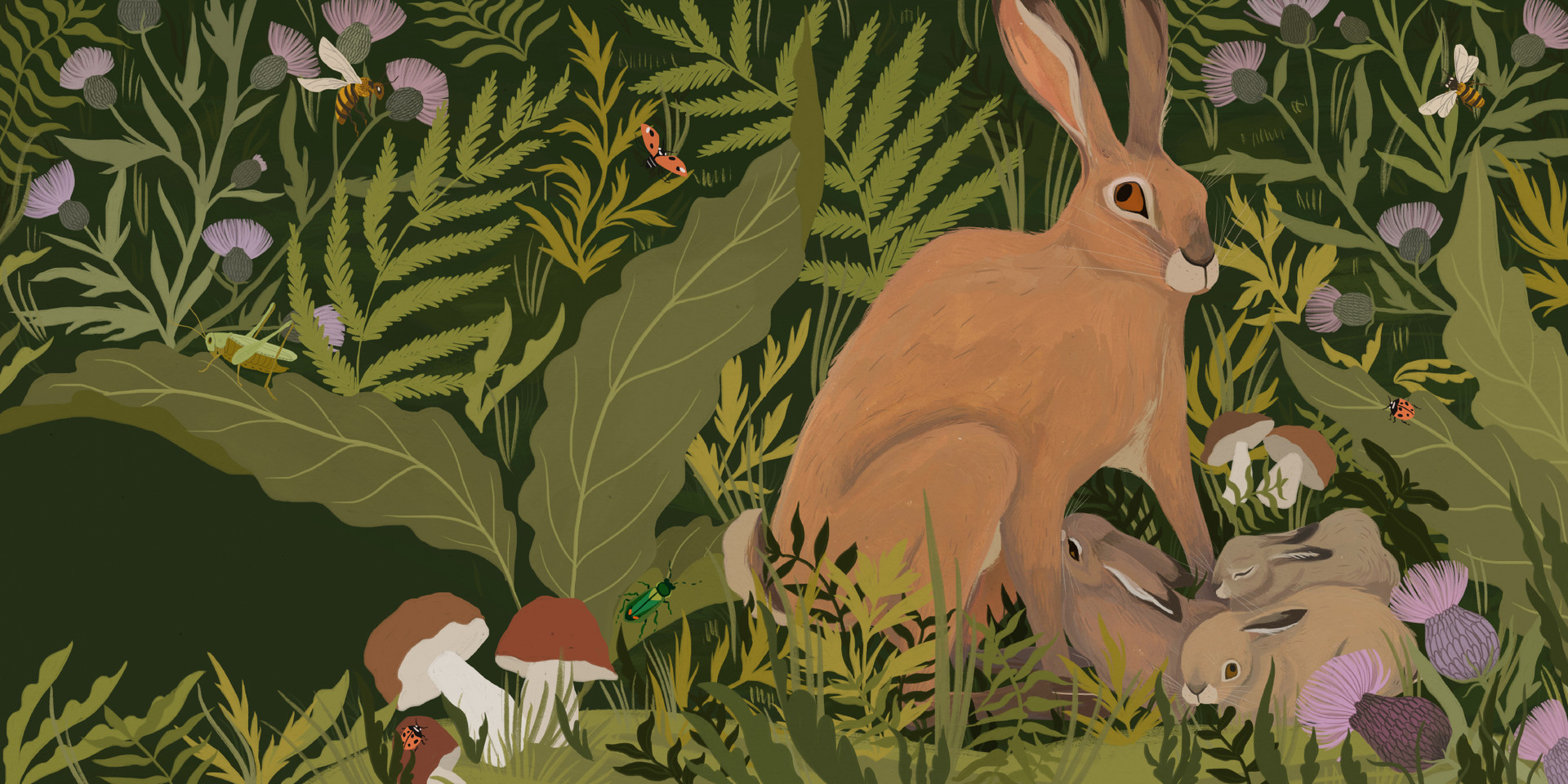 Leap, Hare, Leap - Brown Hare
