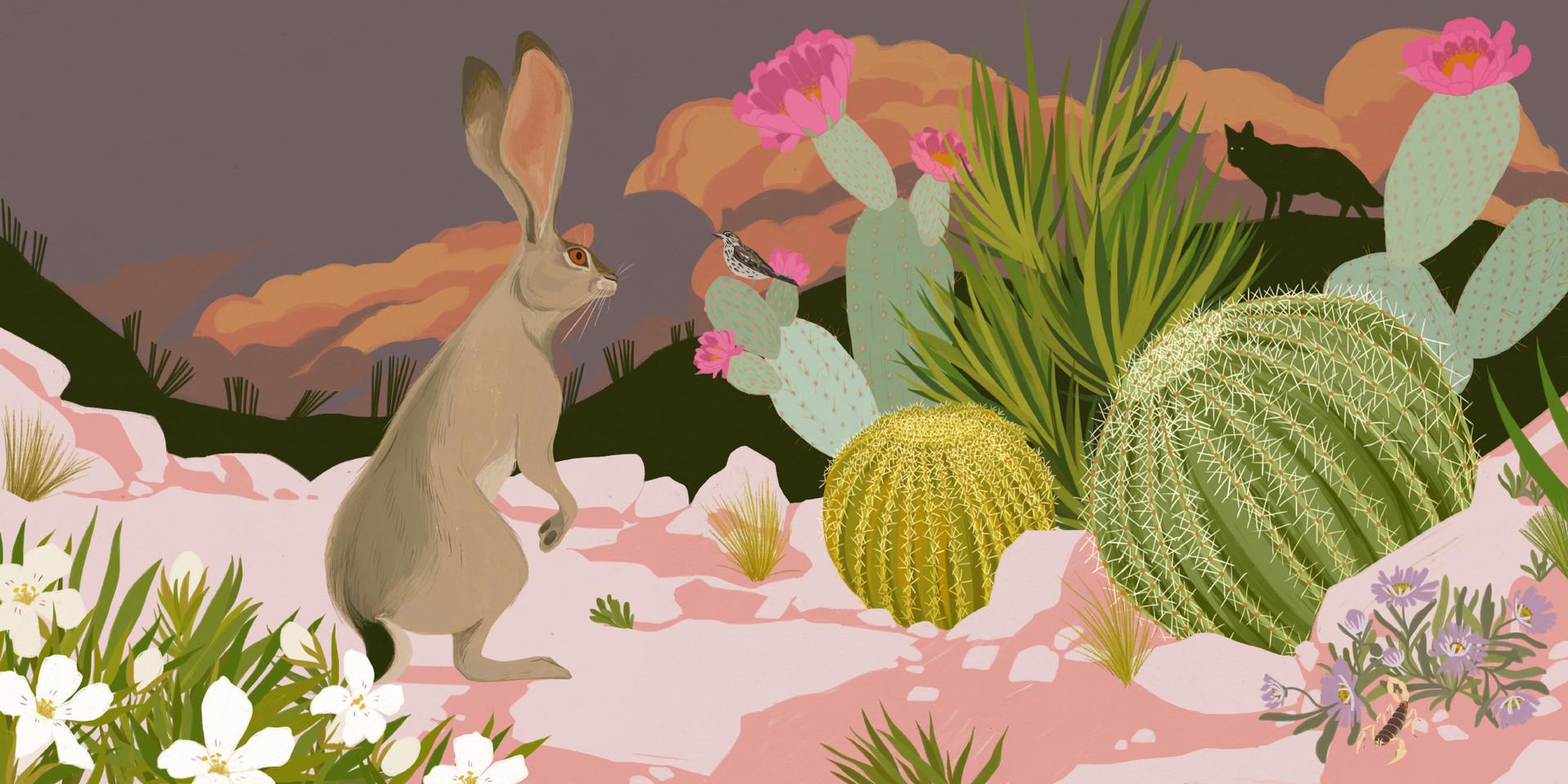 Leap, Hare, Leap - Jackrabbit