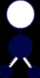 Associação Desportiva Marista (ADM) - Escalões HIDROGINÁSTICA