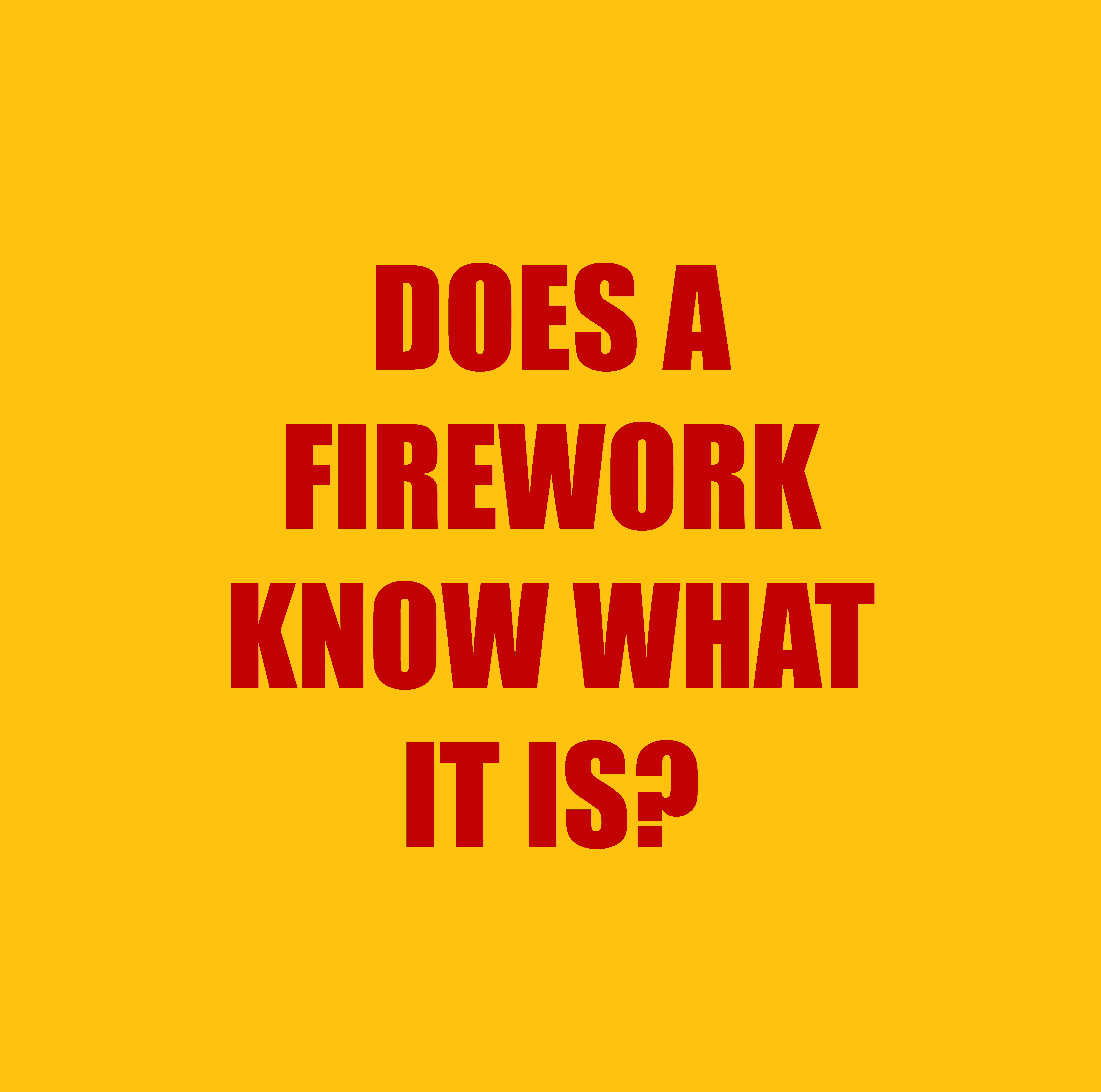DOES A FIREWORK KNOW WHAT IT IS?