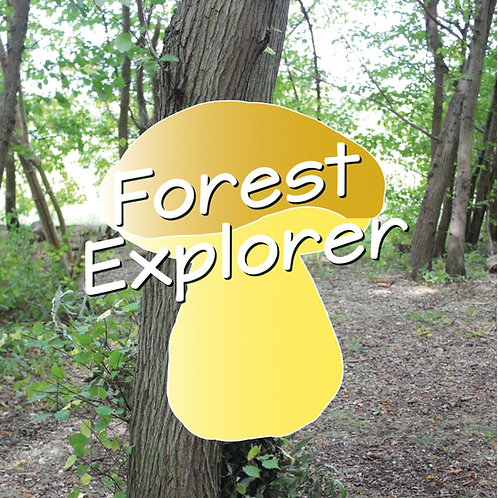 Forest Explorer