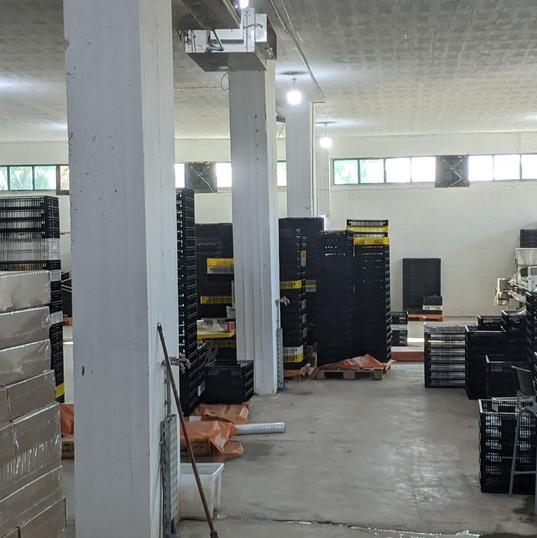 sorting area