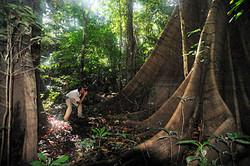 HQueiroga_Amazonia_DSC3519.jpg