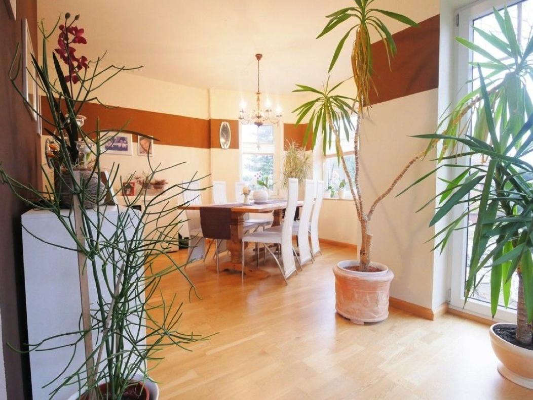 5572 Wohnzimmer mit Essbereich