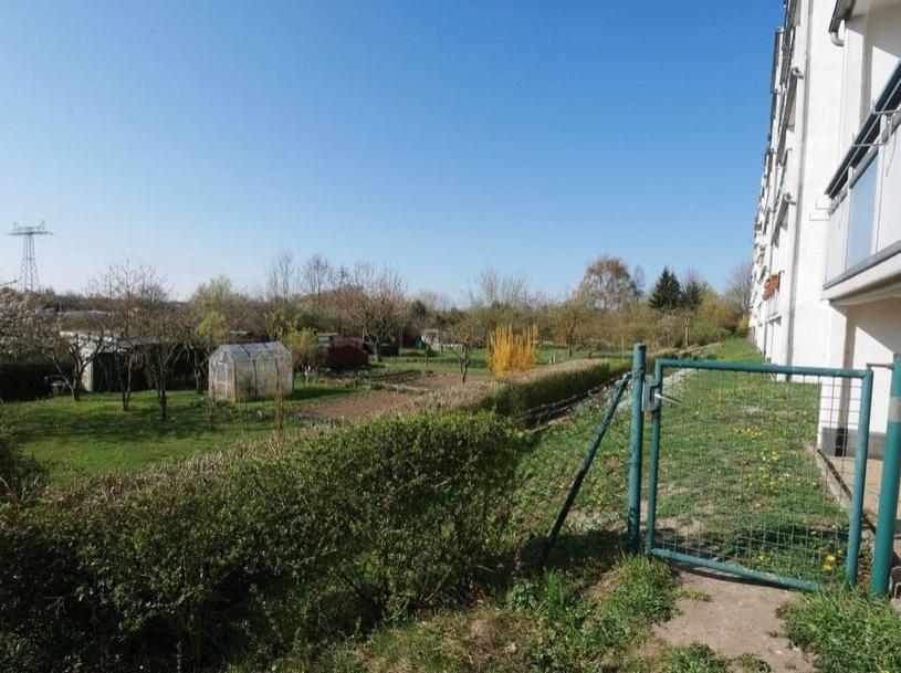 5591 Blick auf Kleingartenanlage