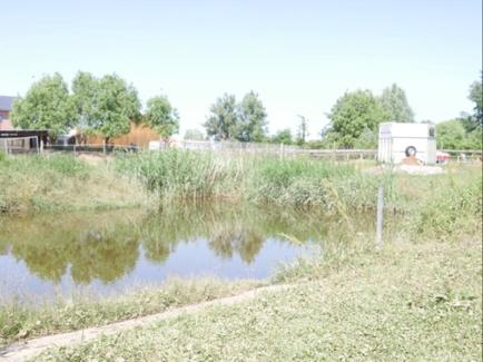 26 Koppel mit Teich