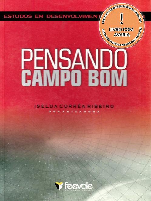 ESTUDOS EM DESENVOLVIMENTO REGIONAL II: PENSANDO CAMPO BOM