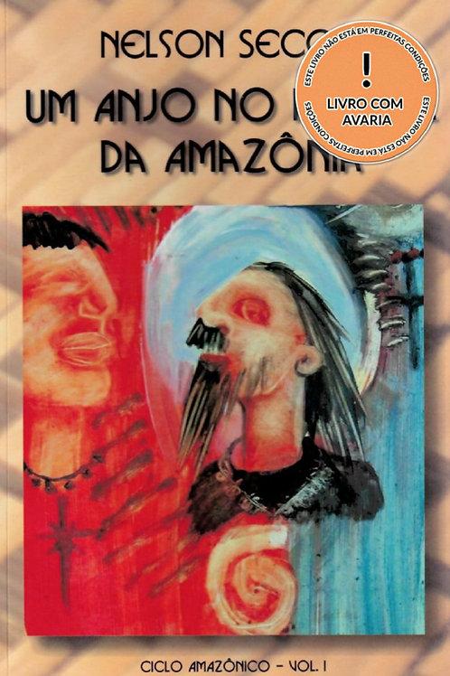 UM ANJO NO PORTAL DA AMAZÔNIA: CICLO AMAZÔNICO - VOL. 1
