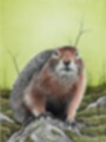 Ground Squirrel 3 72dpi 25%.png