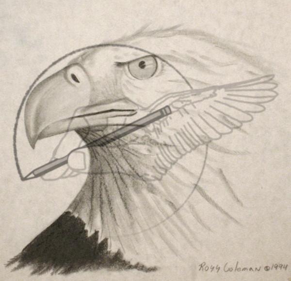 eagle '94.jpg