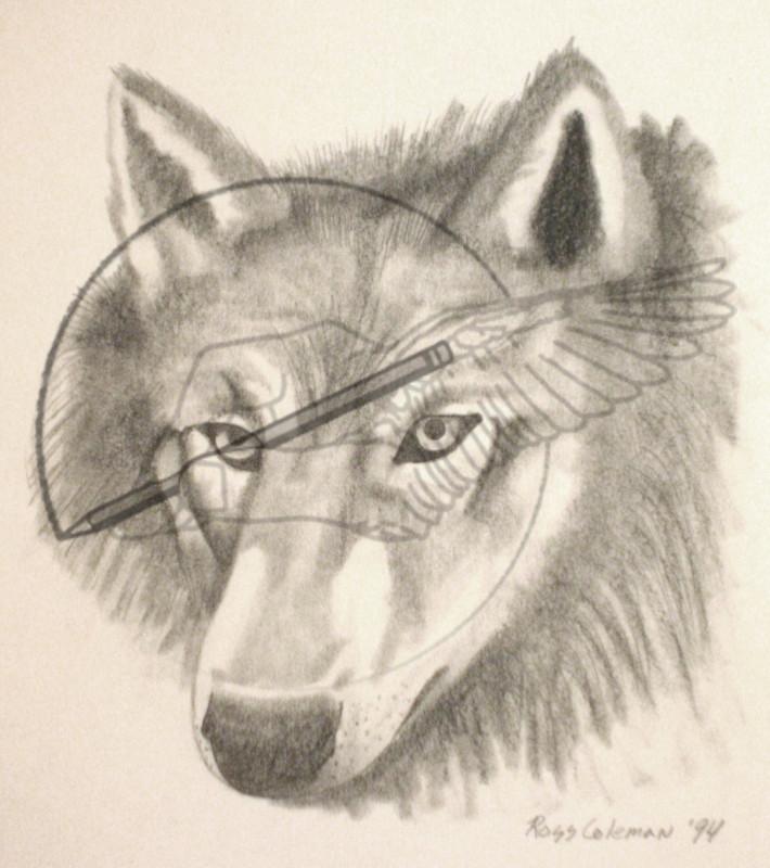wolf '94.jpg