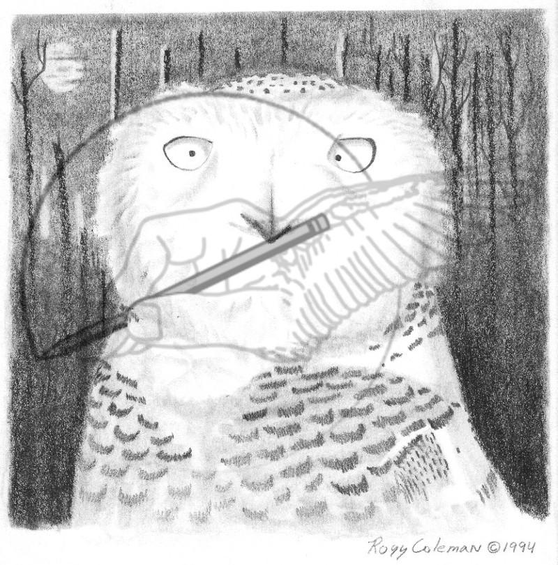 snowy owl '94.jpg