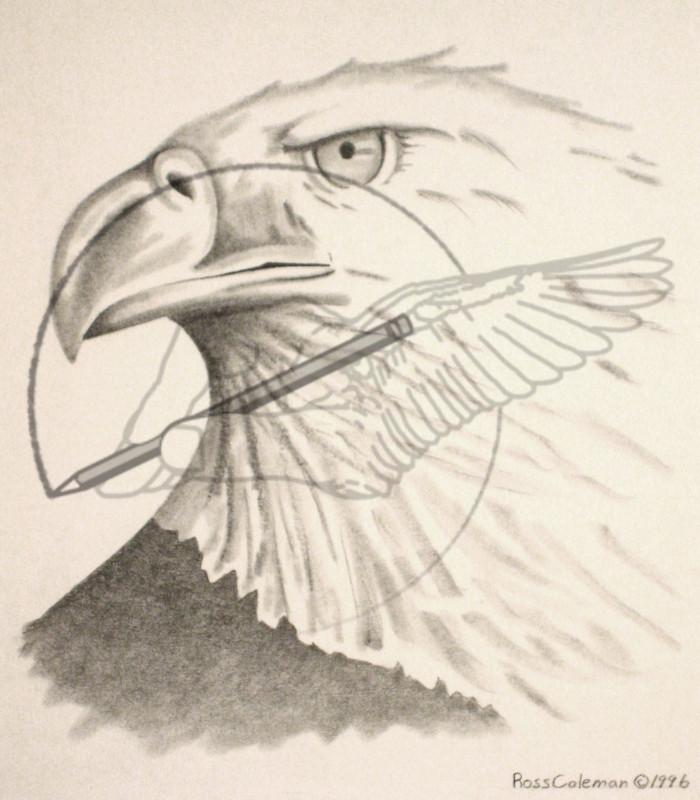 eagle '96.jpg