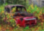 Red Dodge 72dpi 25%.png