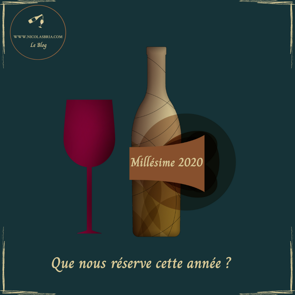 C'est l'affiche de l'article. On y voit une bouteille et un verre de vin rouge, sur un fond vert, avec le titre suivant : Millésimes 2020