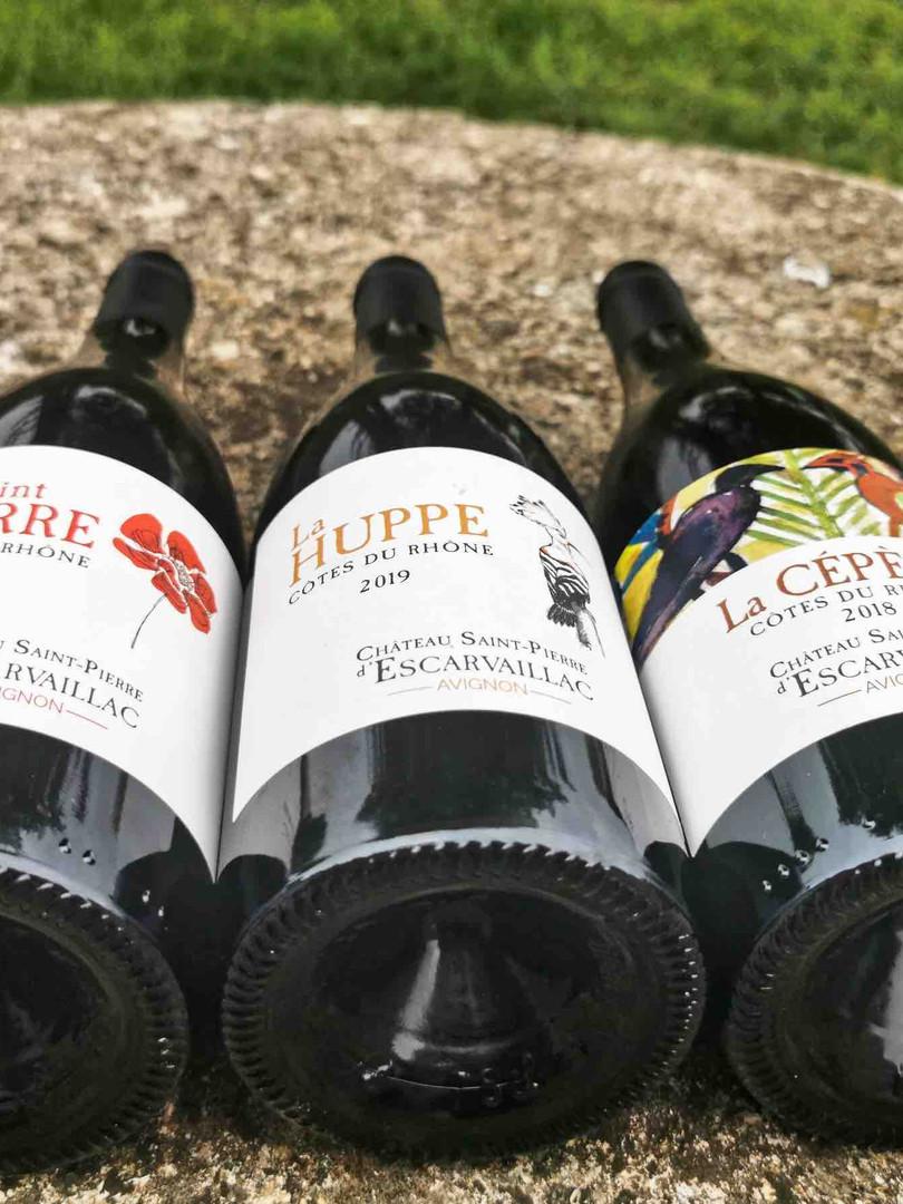 Les vins d'Escarvallaic