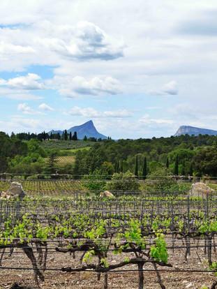Au delà de ma Vallée du Rhône...