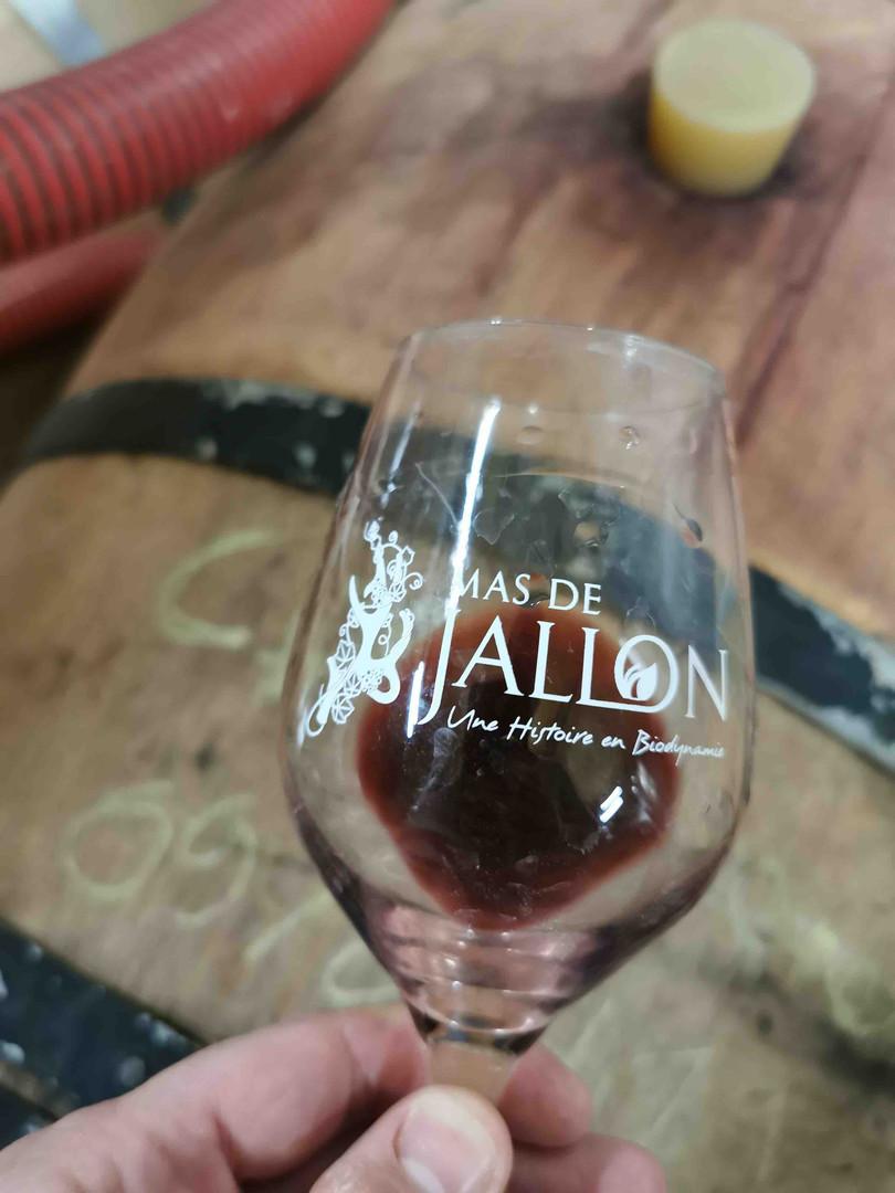Dégustation au Mas de Jallon