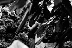 oak-park-conservatory-quiet-intimate-romantic--engagement-wedding-chicago-documentary-photographer-r