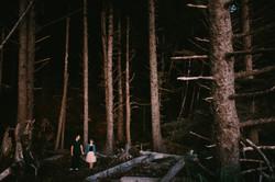 olympic-peninsula-washington-oregon-forest-dark-moody-dramatic-destination-engagement-wedding-chicag
