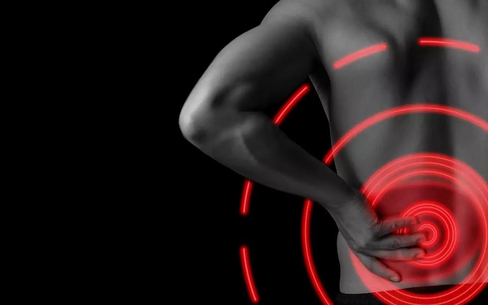 Vulpés Nierengurt - beheizbarer Nierenwärmer gegen Rückenschmerzen