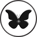 Vulpés Kidney Belt - butterfly design structure