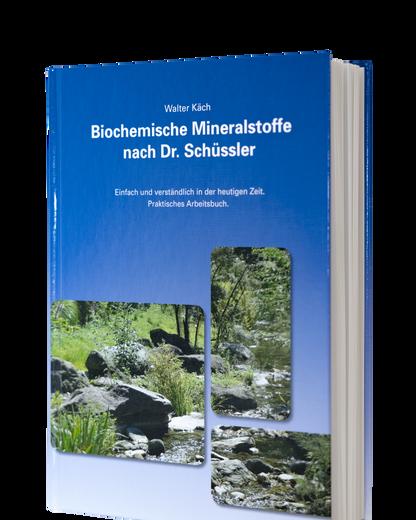 Schüssler_Buch.png