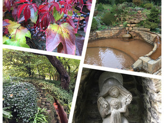 A blissful time in the Chalice Well Gardens, Glastonbury