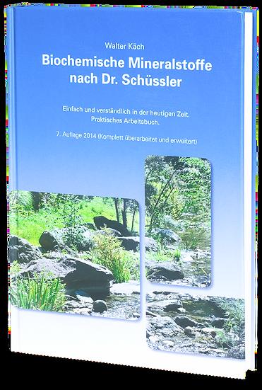 Schüssler Buch von Walter Käch
