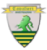 Logo Cavalieri Investigazioni Investigatore Privato