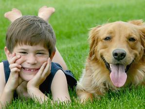 Saiba qual é o cão ideal para o seu filho