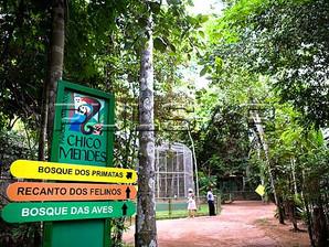 """Parque """"Chico Mendes"""" terá oficina de brinquedos"""