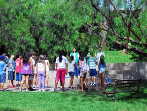 Parque da Biquinha terá atividades lúdicas para comemorar o Dia da Árvore