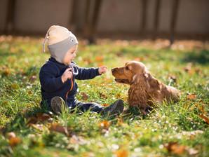 7 dicas para uma convivência harmoniosa entre cães e crianças