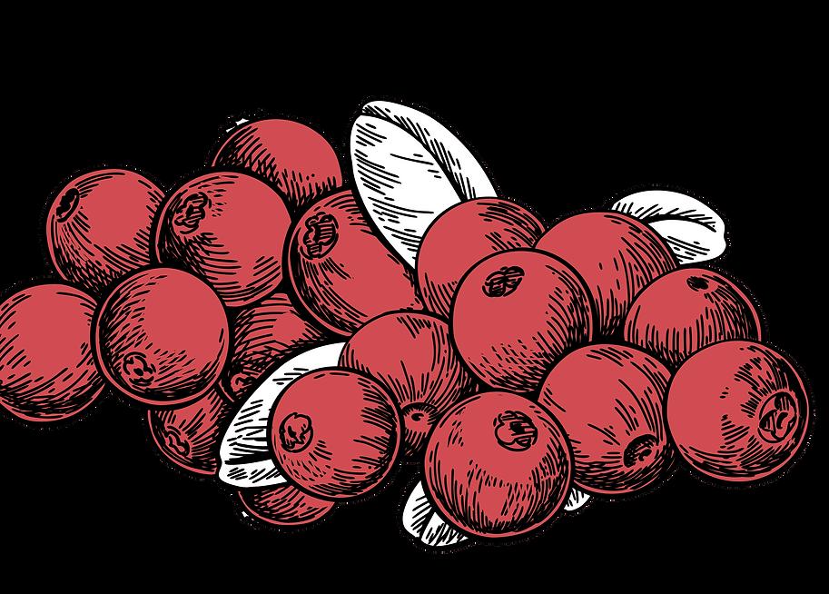 Craes Cider uses superfruits
