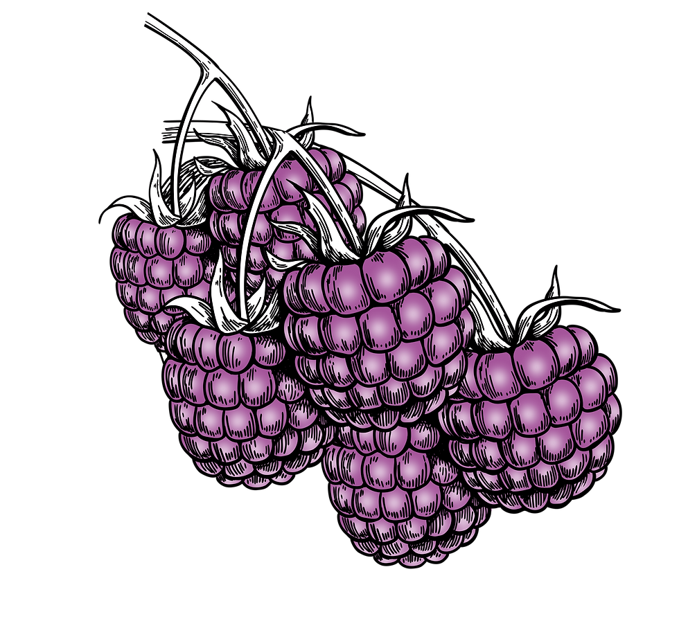 Cranes Cider Fresh Raspberries