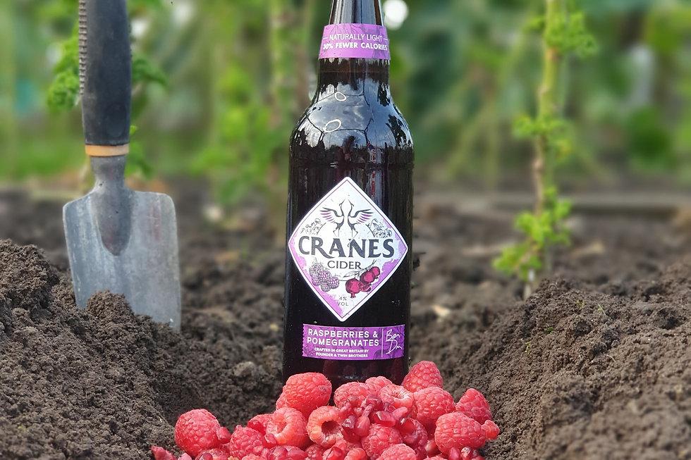 Cranes Cider - Raspberries & Pomegranates