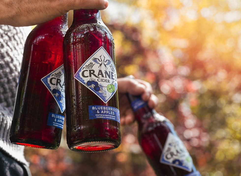Cranes Ciders - Blueberries & Apples
