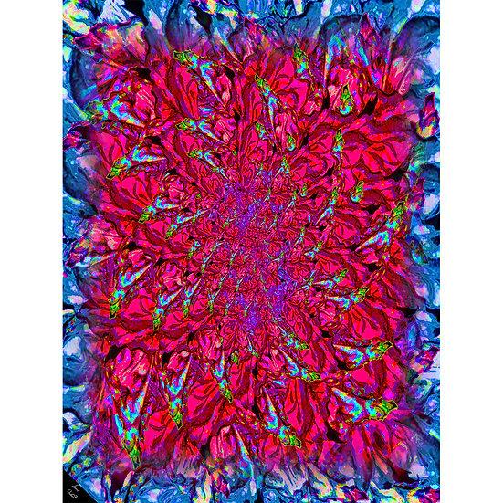 Leaf Burst Pink Shawl