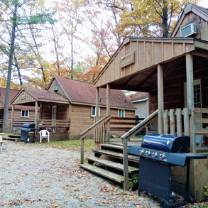 Cabin Rentals.jpg