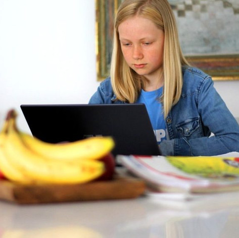ONLINE LEARNING AND YOUR CHILD'S MENTAL HEALTH DURING LOCKDOWN