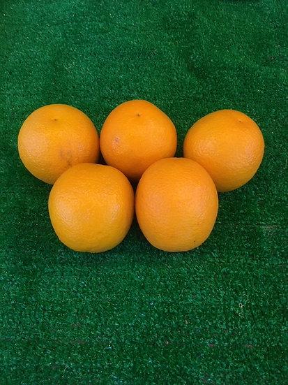 Medium Oranges (x5)-£1.49