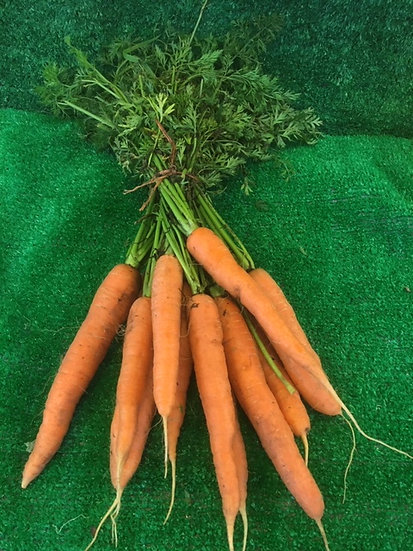Bunch Carrots £1.25