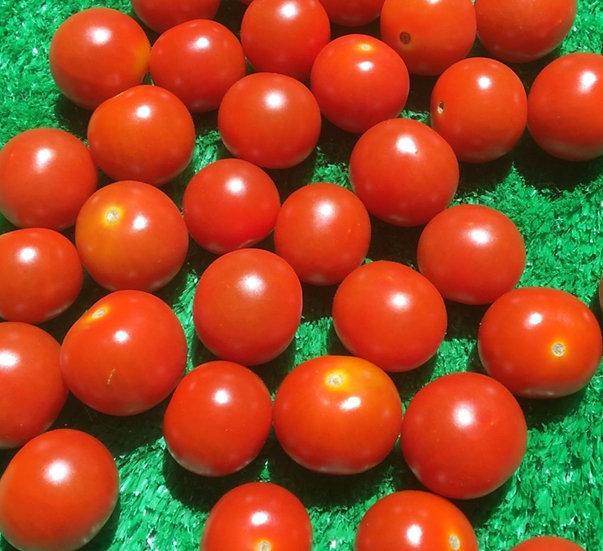 Cherry Tomatoes-  99p