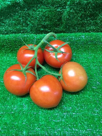 Vine Tomatoes (x5) - £1.99